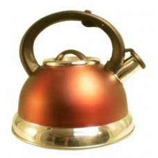 2.8QT S/S Tea Kettle