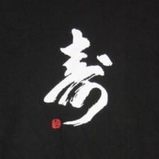 XXL Kanji T-Shirt - Long Life